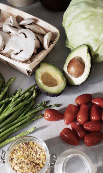 Bilan et programme nutrition
